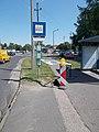 'Reptéri út, Hűtőház utca' bus stop, 2018 Győr.jpg