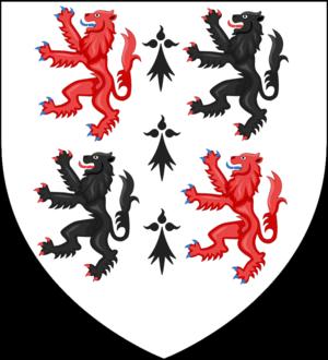 Donegan (surname) - Ó Donnagáin.