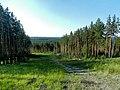 ГОРА ЛИСТВЕННАЯ, горнолыжный развлекательный комплекс - panoramio (1).jpg