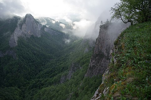 Canyon of Khodz River in heavy clouds, Adygea, Western Caucasus