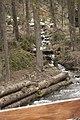 Околиці водоспада Шипіт.jpg
