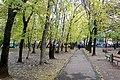 Осень во дворе - panoramio (1).jpg