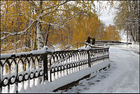 Первый снег и золото осени.jpg