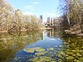 Пойменный водоем по правому берегу реки Яузы ниже Окружной ж.д. 03.jpg