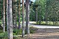 Финляндия - panoramio (7).jpg
