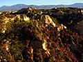 Цветовете на есента.jpg