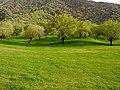 تصویری از روستای زیبای دره اناران.jpg