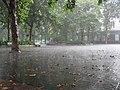 儿童公园雨 - panoramio.jpg