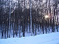 北見市 - panoramio (10).jpg