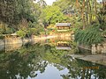 南山植物园-景色 - panoramio.jpg