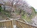 城峯公園 - panoramio.jpg