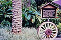 東南植物樂園 Southeast Botanical Garden - panoramio.jpg