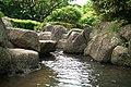 東高根森林公園 - panoramio (26).jpg