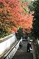 知恩院 Chion-in (11152624265).jpg