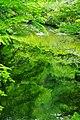 米内川 Yonai-gawa River - panoramio.jpg