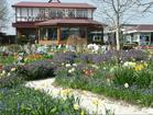 花の径とレストラン「フラワーハーツ」.png