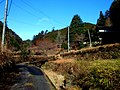 高山集落 - panoramio (27).jpg