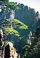 黄山c - panoramio.jpg