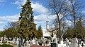 - Cmentarz Nowofarny - panoramio (43).jpg