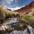 -goldenbullatacama (13998711857).jpg