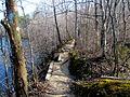 02 Quarry Trail Eno River SP NC 7903 (12483677145).jpg