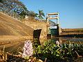09645jfAngat River Dam Bay Eichhornia crassipes San Rafael Bustos Angat Bulacan villagesfvf 05.JPG