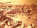 099 Musée préhistoire Carnac.jpg
