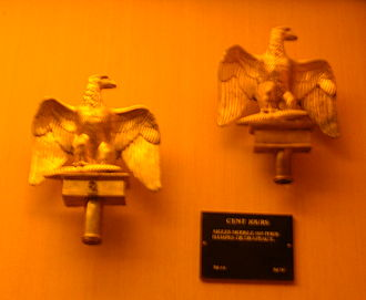 French Imperial Eagle - Two eagles from the Hundred Days on display at the Musée de l'Armée