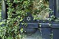 100viki Cmentarz żydowski na Ślężnej. Foto Barbara Maliszewska.jpg