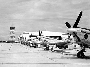 120th Fighter Squadron - 120th Fighter Squadron P-51 Mustangs, 1946