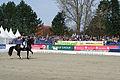 13-04-21-Horses-and-Dreams-Elena-Sidneva (17 von 21).jpg