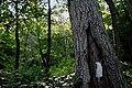 2006-07-24 - Road Trip - Day 1 - United States - Pennsylvania - Delaware Water Gap - Appalachian Tra 4888477705.jpg