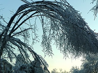 December 2008 Northeastern United States ice storm - Image: 2008NYSIce Storm 2