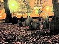 2009 CentralBuryingGround BostonCommon2.jpg