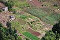 2010-03-03 17 23 36 Portugal-Boaventura.jpg