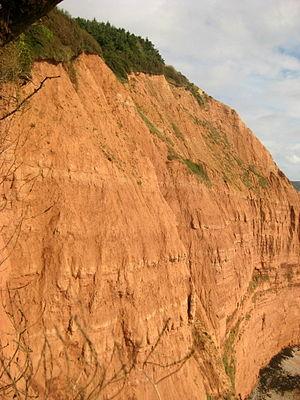 High Peak, Devon - Peak Hill cliff face