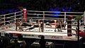 2011 boxing event in Stožice Arena-Sov I.jpg