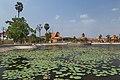 2016 Kampot, Staw lotosów (08).jpg