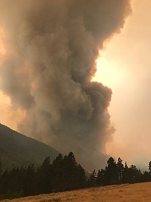 2017 Montana wildfires - The Alice Creek Fire on August 28, 2017