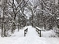 2019-01-14 10 40 48 View along a walking path and footbridge after a heavy snowfall in the Franklin Farm section of Oak Hill, Fairfax County, Virginia.jpg