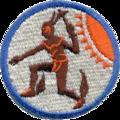 37thFighter-Interceptor-Squadron-ADC.png