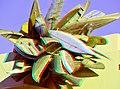 3D IMG 6888c1-Anaglyph Photo 3D (48787839273).jpg