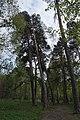 68-255-5014 шепетівський.jpg