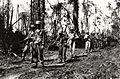 6th Division Soldiers 22JUN1944.jpg