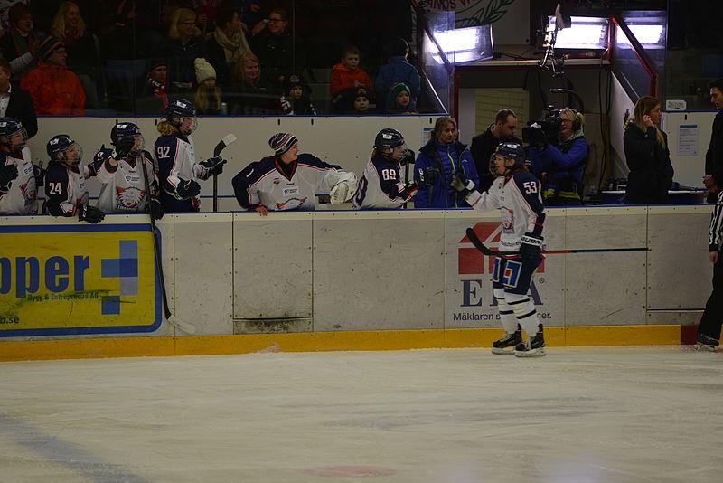 linköpings hockey
