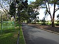 AU-Qld-Kalinga-Park-Avenue of Honour-2021.jpg