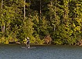 A Man Paddle Boarding.jpg