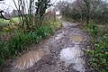 A Very Wet Watery Lane - geograph.org.uk - 629836.jpg
