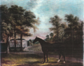 A horse in a landscape with castlemartin in the background. The property was occupied by the Carter family from 1730 to 1850.png