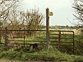 A stile at a footpath towards Broomfield - geograph.org.uk - 765356.jpg